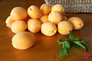 Apricot, Armenia's Fruit